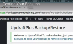 Image showing Test Your Backup and part of the UpdraftPlus screen.