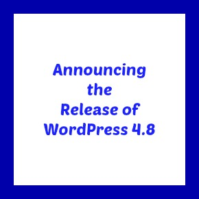 "Box with white background and blue border with the text ""Announcing the Release of WordPress 4.8"""